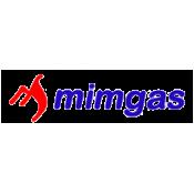 МИМГАЗ (5)